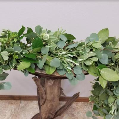 Eucalyptus Olive and Pitt 11.95 per ft