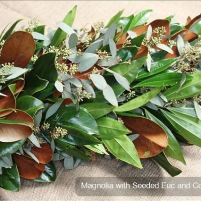 Magnolia with seeded eucalyptus and coculus